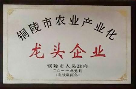 铜陵市农业产业化龙头企业