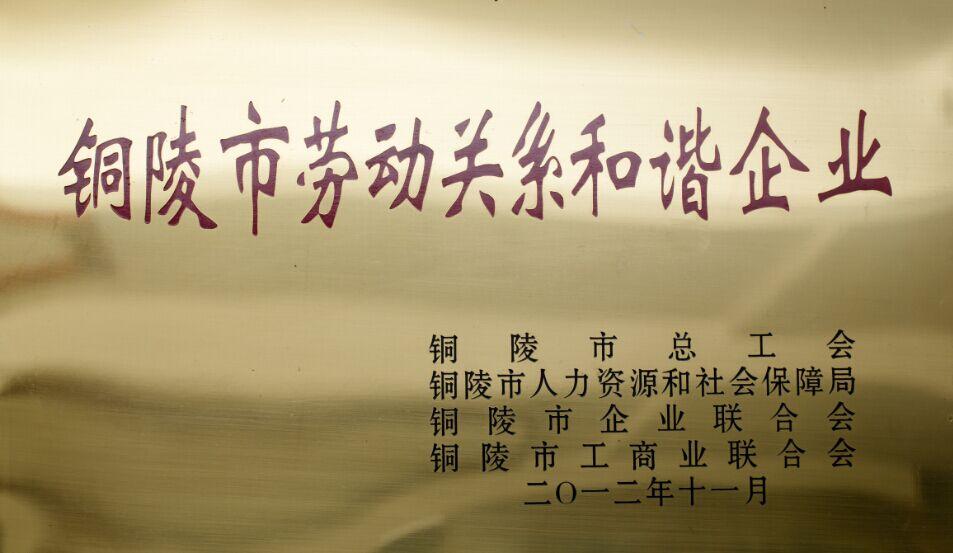 铜陵市劳动关系和谐企业